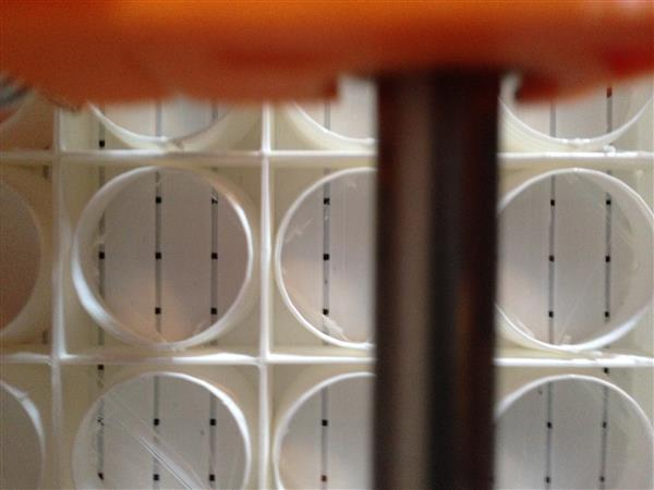 these-3d-printed-modules-can-be-used-absorb-sound-at-home-in-office-3.jpg